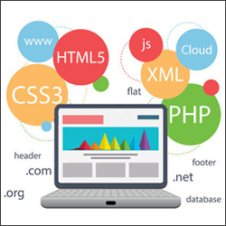 Web Designing And Developing Services